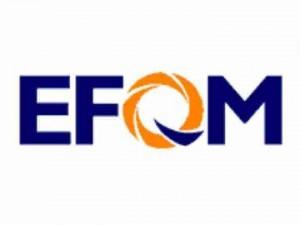 EFQM 1